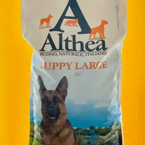 ALTHEA PUPPY LARGE