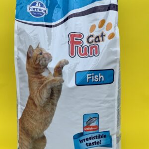 CAT FUN FISH